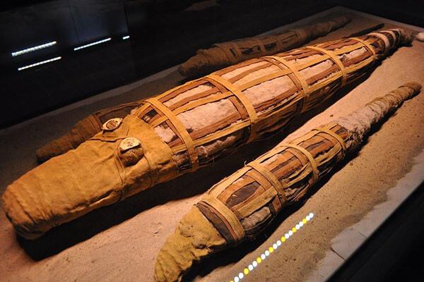 مومياوات متحف التحنيط
